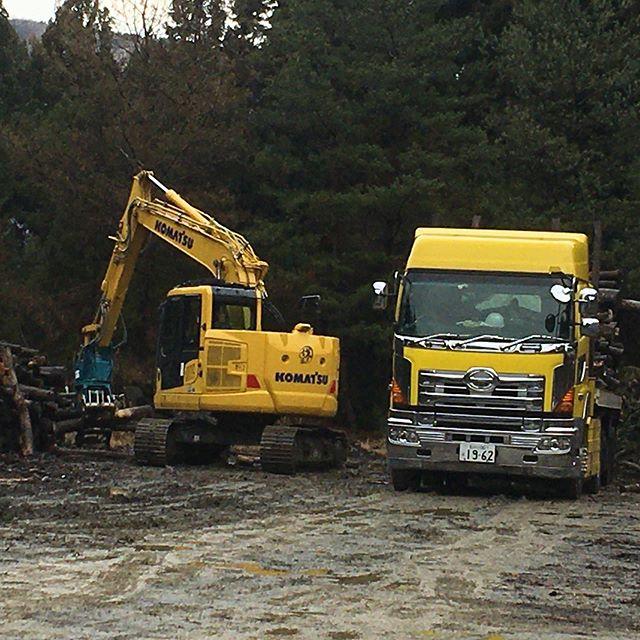 自社土場に溜まったバイオマス行きの材の積込作業。雪️が無いので出来るだけ掃けたいのですが......運搬業社さんも忙しく中々来て頂けない状況今年度中に全て搬出したい#伐採#特殊伐採#林業#バイオマス#積込#運搬#トレーラー#石川県#白山市#鶴来#なかの林業