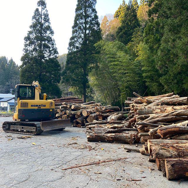 山土場🌳ほんの一部まだまだ出て来ますよ#伐採#林業経営計画#更新伐#板尾地区#石川県#白山市#鶴来#なかの林業