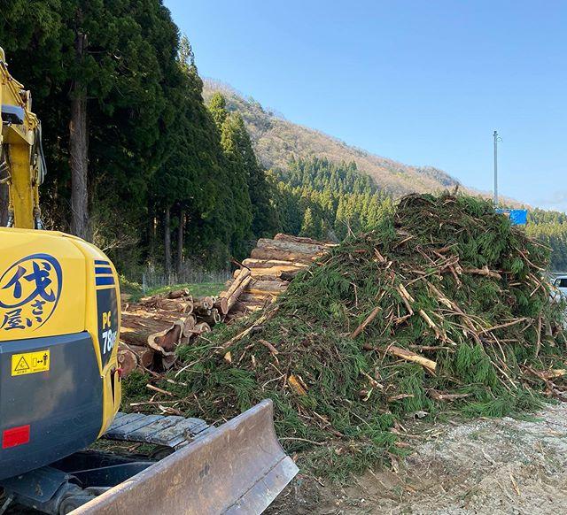 枝葉産廃ゴミの山️来週アームロールに積込み#伐採#特殊伐採#林業#産業廃棄物#アームロール#石川県#白山市#鶴来#なかの林業