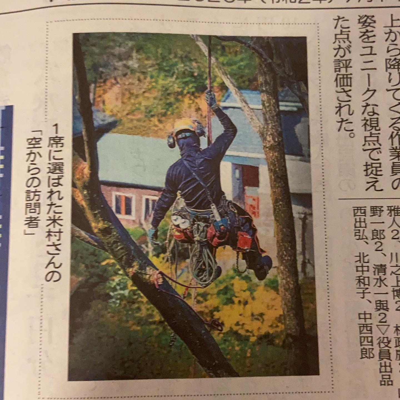 『天空からの訪問者』北国新聞に取り上げて頂きました😀#伐採#特殊伐採#林業#北国新聞#石川県#白山市#鶴来#なかの林業