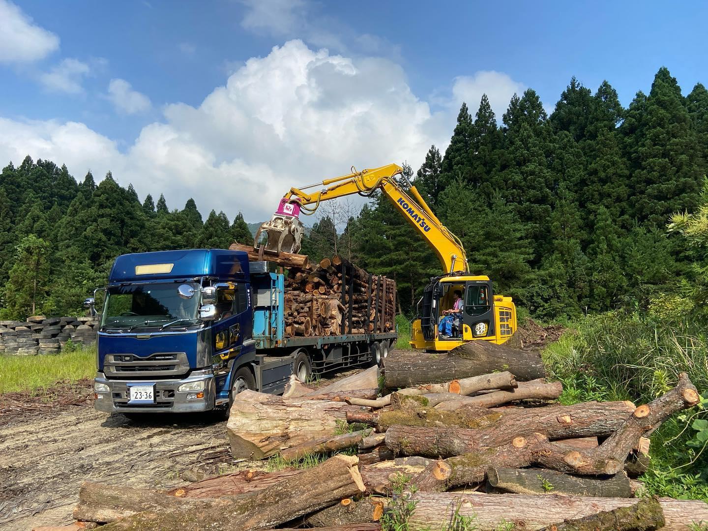 パルプ材積込#伐採#特殊伐採#林業#積込#石川県#白山市#鶴来#なかの林業