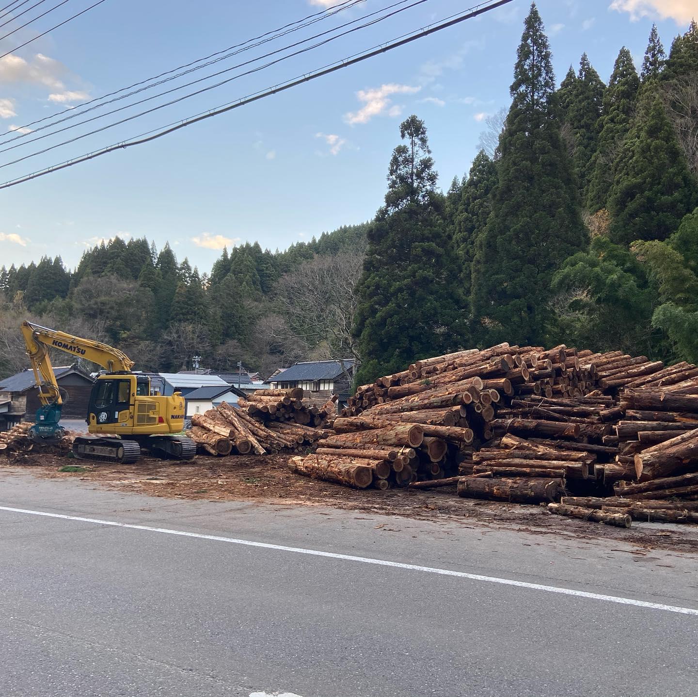 板尾公社林そろそろ完了です。#伐採#特殊伐採#林業#林業公社#間伐#石川県#白山市#鶴来#なかの林業