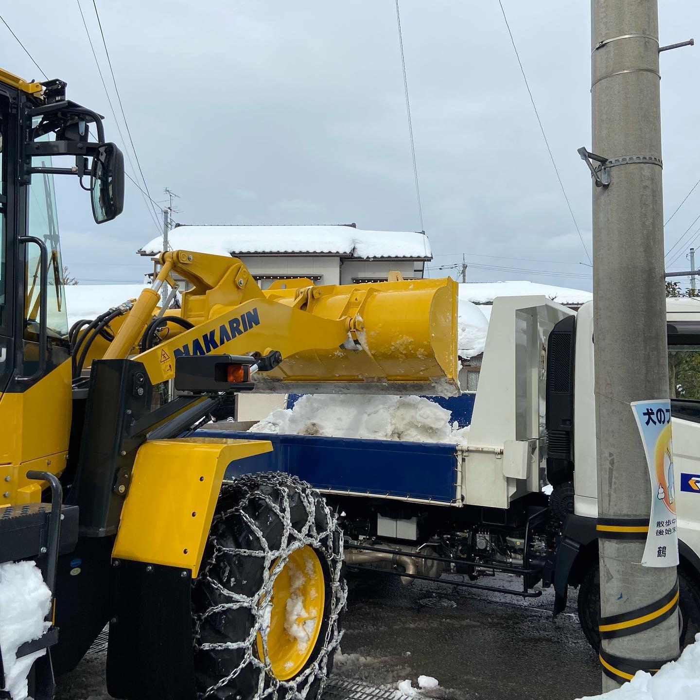 圧雪起こしからの排雪作業️#伐採#特殊伐採#林業#除雪#圧雪#エッジが減る#石川県#白山市#鶴来#