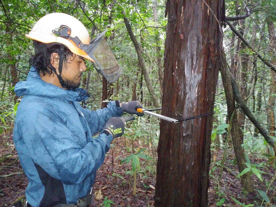 ようやく支障木精密調査が終わりました。奥能登まで毎回お疲れ様でした!彼達には次、近場の現場用意しときます笑#伐採#特殊伐採#林業#支障木精密調査#線下伐採#石川県#白山市#鶴来#なかの林業