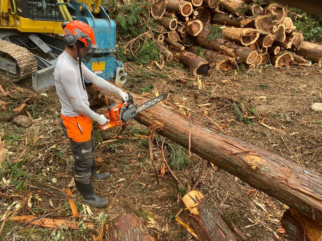 皆伐現場もそろそろ終盤に差し掛かってます安全第一で️#伐採#特殊伐採#林業#皆伐#造材#石川県#白山市#鶴来#なかの林業