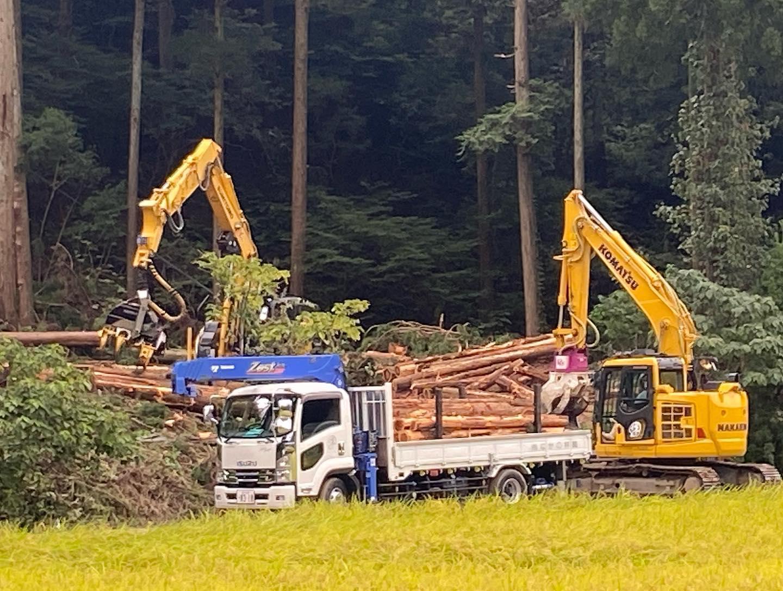 土砂災害の現場。かなり危険な作業なので安全第一で行います!#伐採#特殊伐採#林業#土砂崩れ#石川県#白山市#鶴来#なかの林業