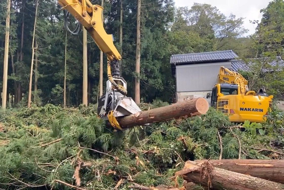 白山市八幡町にて皆伐!高性能林業機械を駆使して作業を行なってます。#伐採#特殊伐採#林業#皆伐#ハーベスター#フェラーバンチャーザウルスロボ#コスト削減#石川県#白山市#鶴来#なかの林業